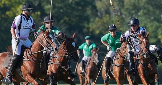 Glennon gallop polo